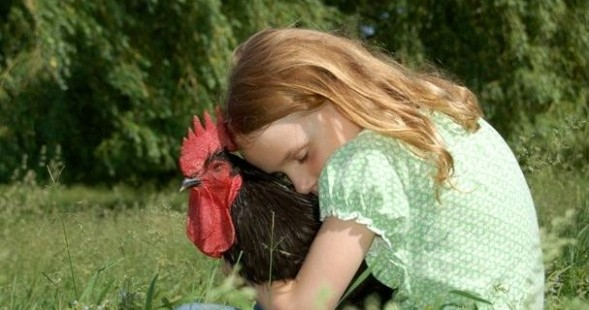 Girl Embracing Chicken in Field