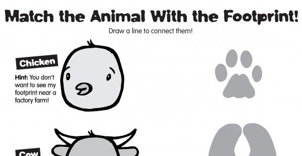 Animal Footprints Printable Activity