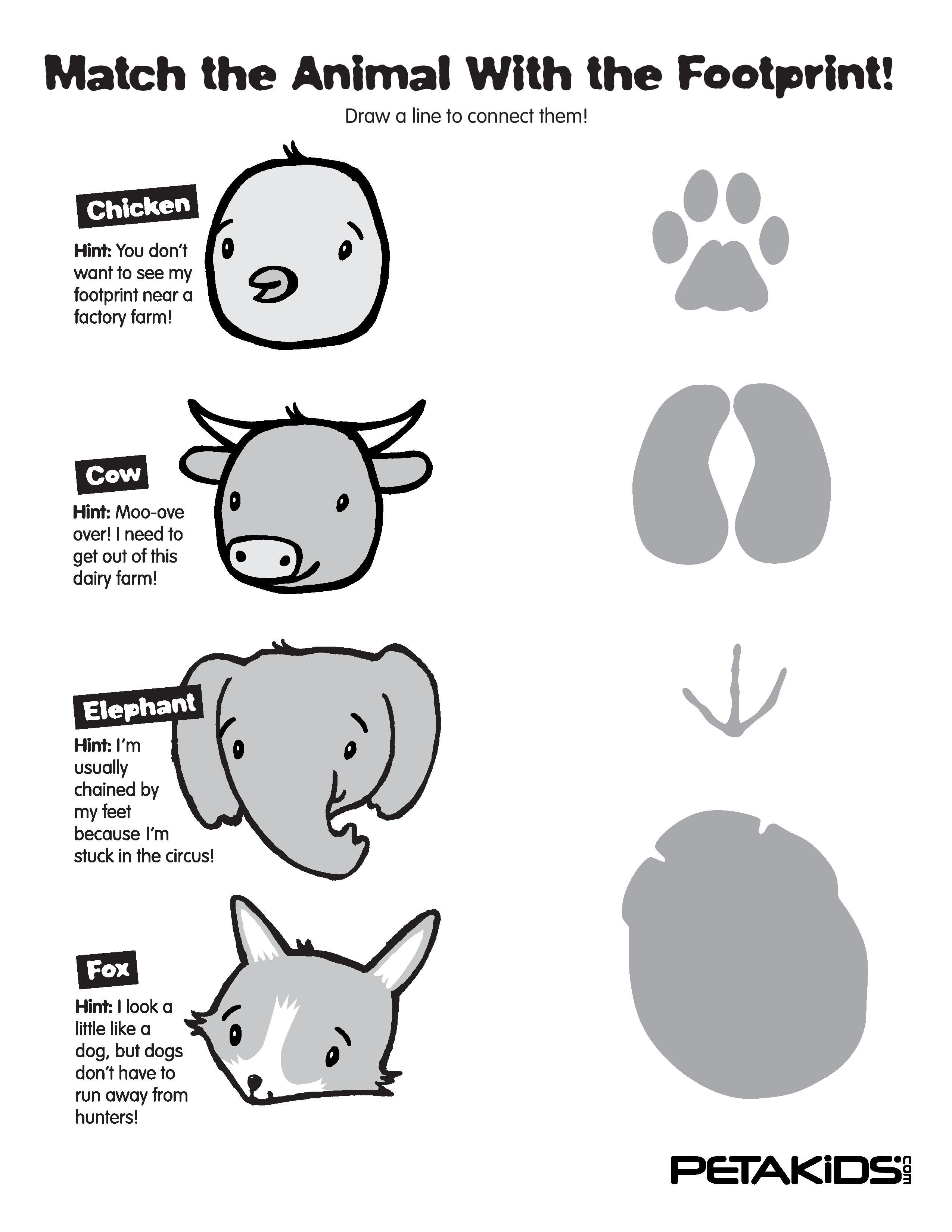 photo relating to Printable Animal Footprints referred to as Animal Footprints: Sport Them All! Routines PETA Little ones