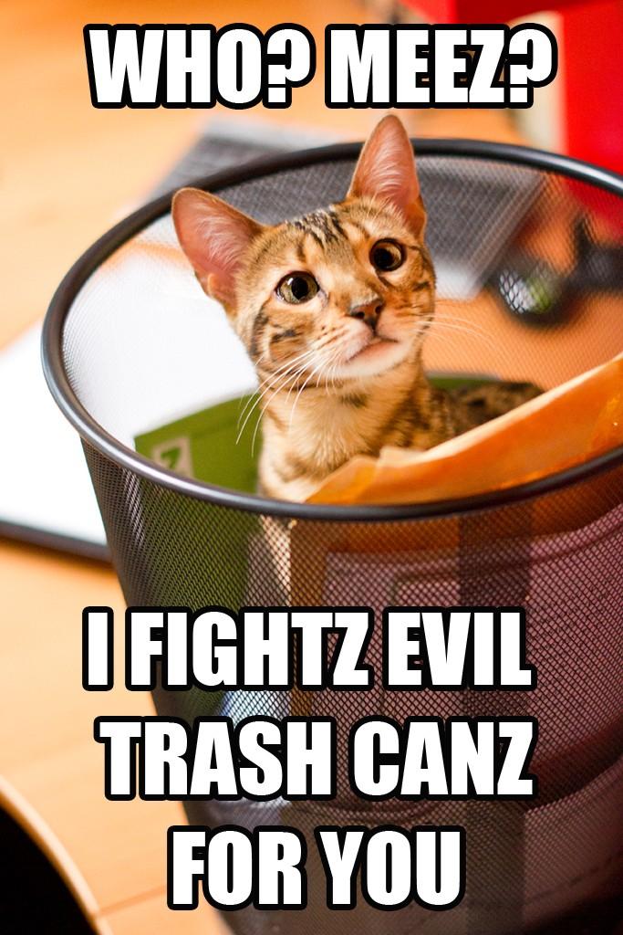 Bengal Cat in Recycle Bin