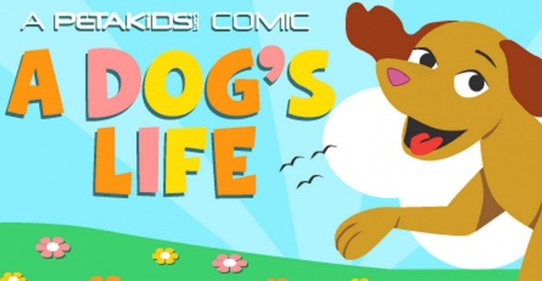 A Dog's Life Comic Book Cover