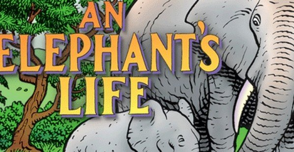 An Elephant's Comic Book Cover