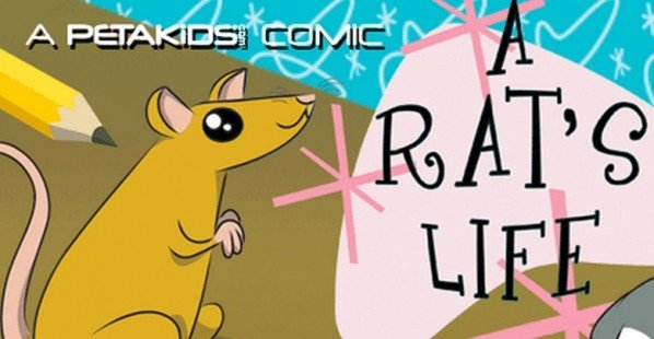 A Rat's Life Comic Book Cover