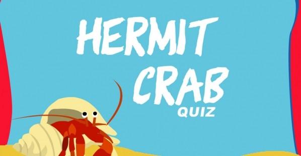 Take Our Hermit Crab Quiz!