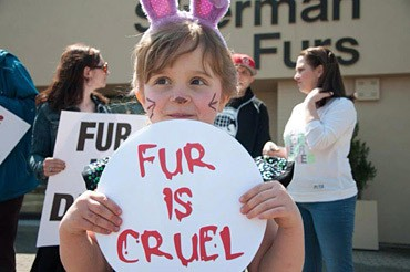Child at Protest Holding Fur Is Cruel Sign