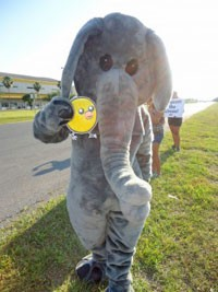 Nugget With Elephant