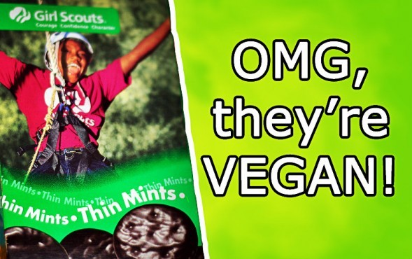 Thin Mints Cookies