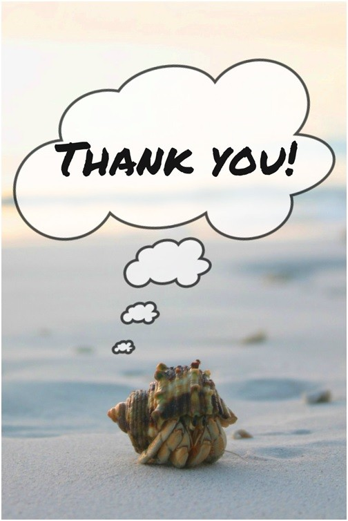 Crab With Thank You Speech Bubble