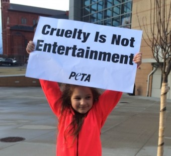 Compassionate Cutie Speaks Up for Elephants