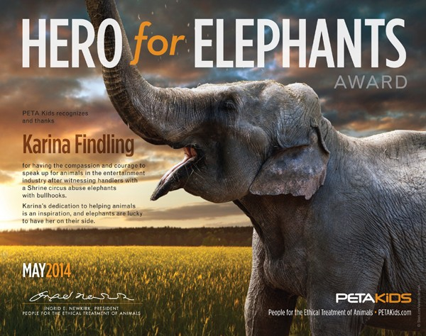 Hero for Elephants Award