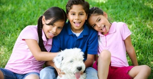 Three Kids Dog In Grass
