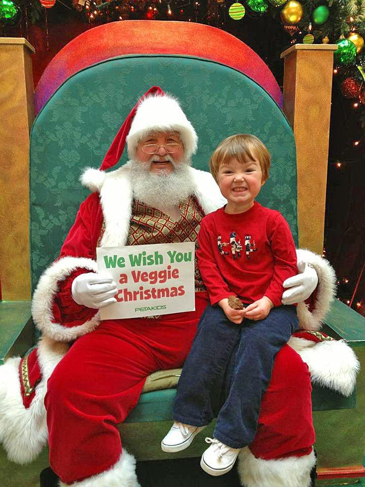 Santa Signs Activity