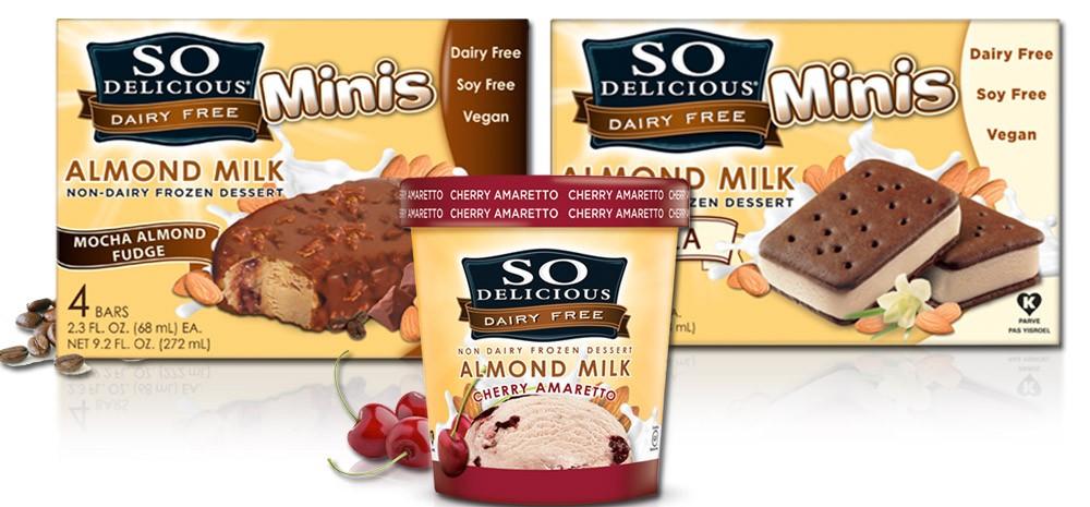 So Delicious Almond Ice Cream