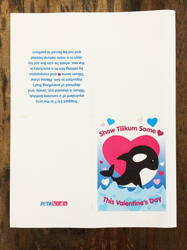 Tilly Valentine