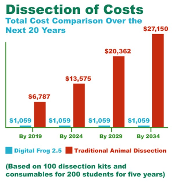 Dissection-Cost-Graph