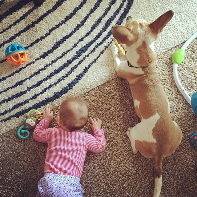 Jenny's-Baby-With-Dog