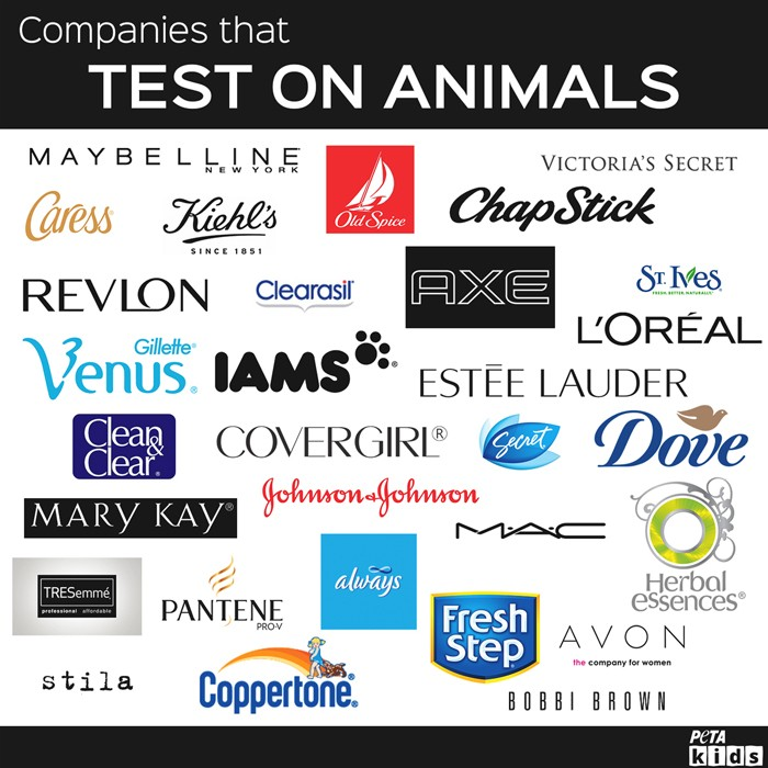 Companies-That-Do-Test-On-Animals-Post-copy-copy-2