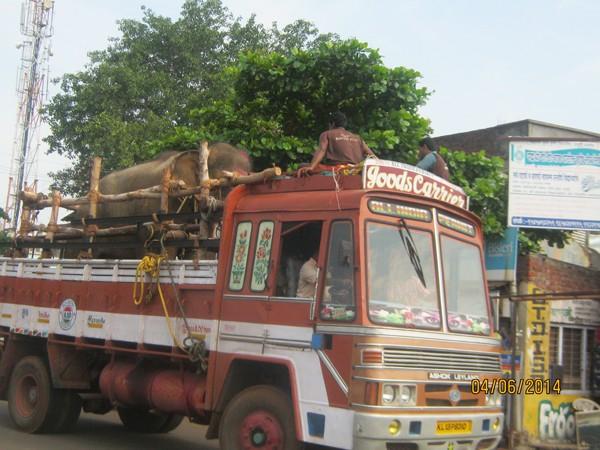 Sunder-On-Truck