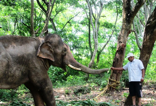 Sunder is greeted with fruit when he arrives at the sanctuary.