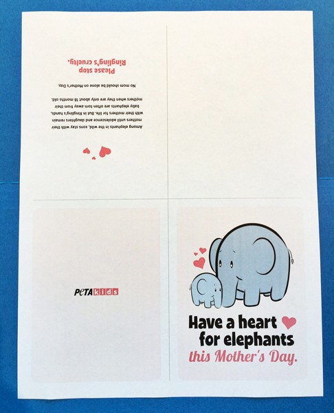 Mothers-Day-Elephant-Cards
