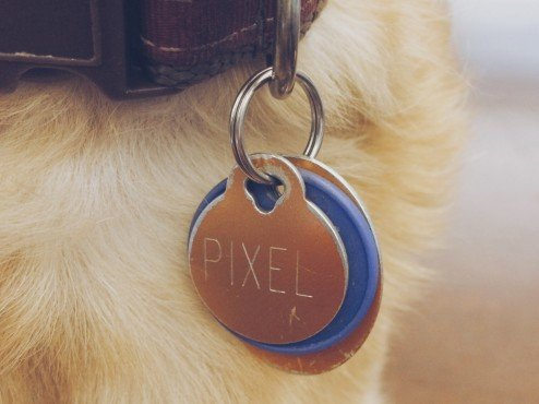 Pixel-Dog-Tags