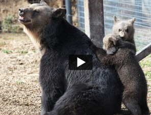 Five Adorable Animal Rescues That Will Make You ❤ PETA