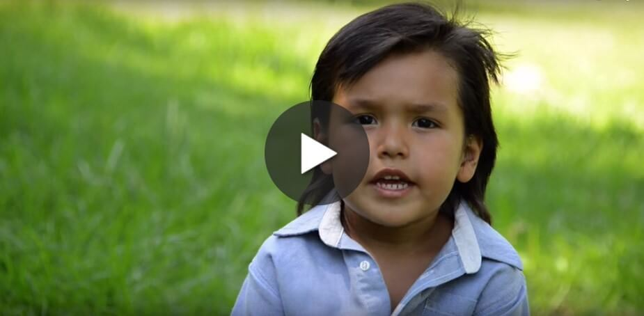 8 videos that prove kids dont want to eat animals videos peta kids