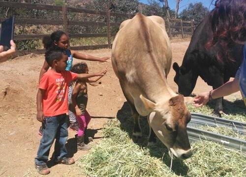 Palacio-Butler-Kids-at-Farm-Sanctuary