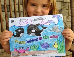 Free 'Orcas Belong in the Wild' Activity Sheets