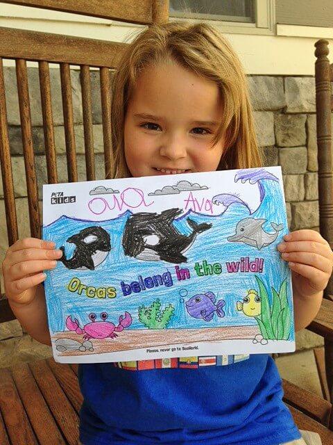 Orca Activity Sheet Ava Kid