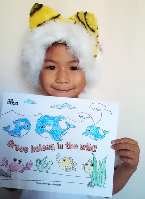 Orcas-Belong-in-Wild-Kid