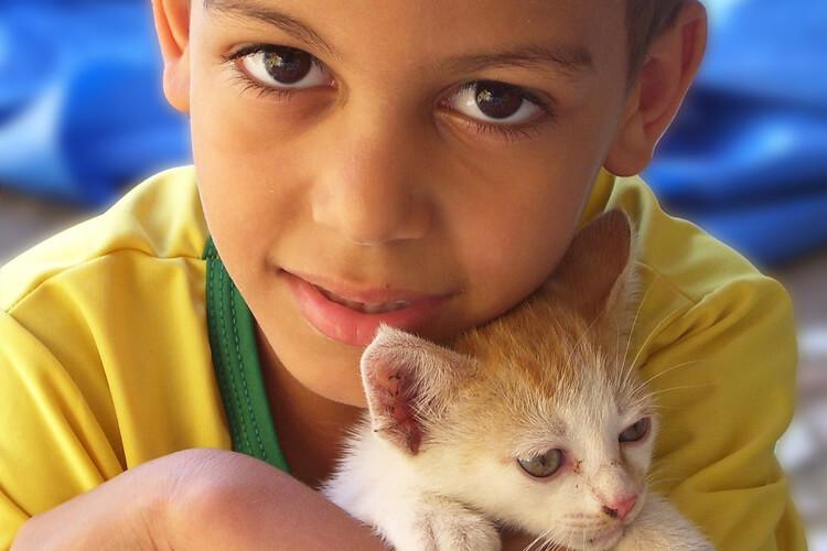 Boy-with-Kitten-Cat