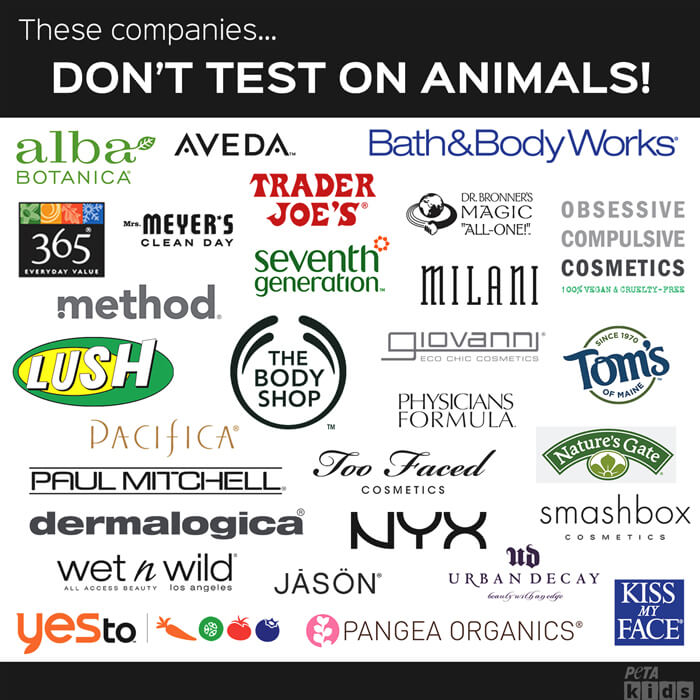 shocking facts about animal testing