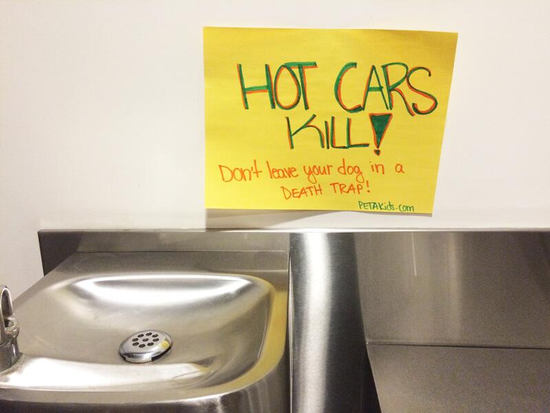 Hot-Cars-Kill-School-Poster