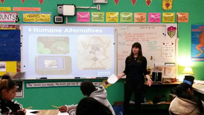 TeachKind-Teacher