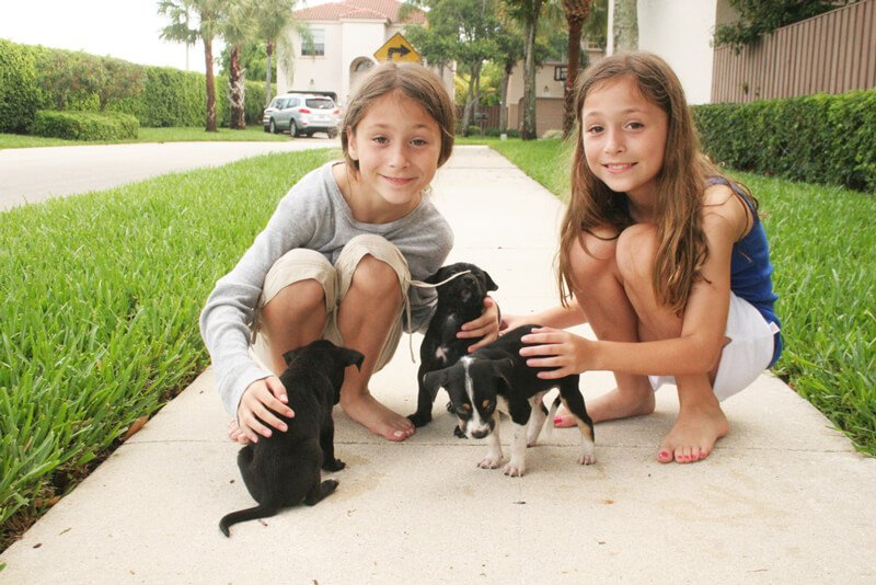 a547e29a797a Alexandria and Sydney love helping animals in need, like these puppies they  helped foster!