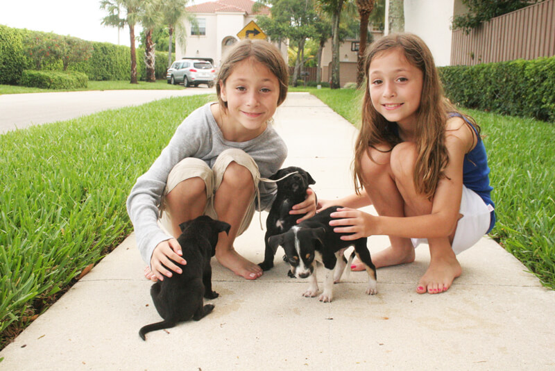 Alexandria and Sydney love helping animals in need, like these puppies they helped foster!