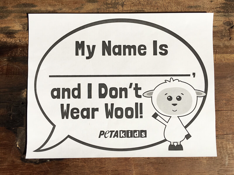 My-Name-is-BLANK-and-I-Don't-Wear-Wool