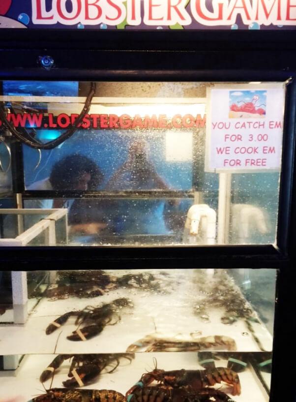 Lobster-Liberation-Lobster-Zone-Machine-700x950-602x817