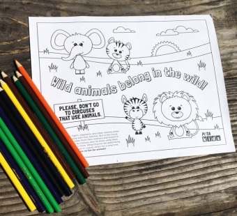 Wild Animals Coloring Sheets