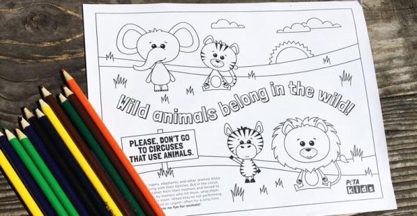 Wild-Animals-Belong-in-the-Wild-Coloring-Sheet