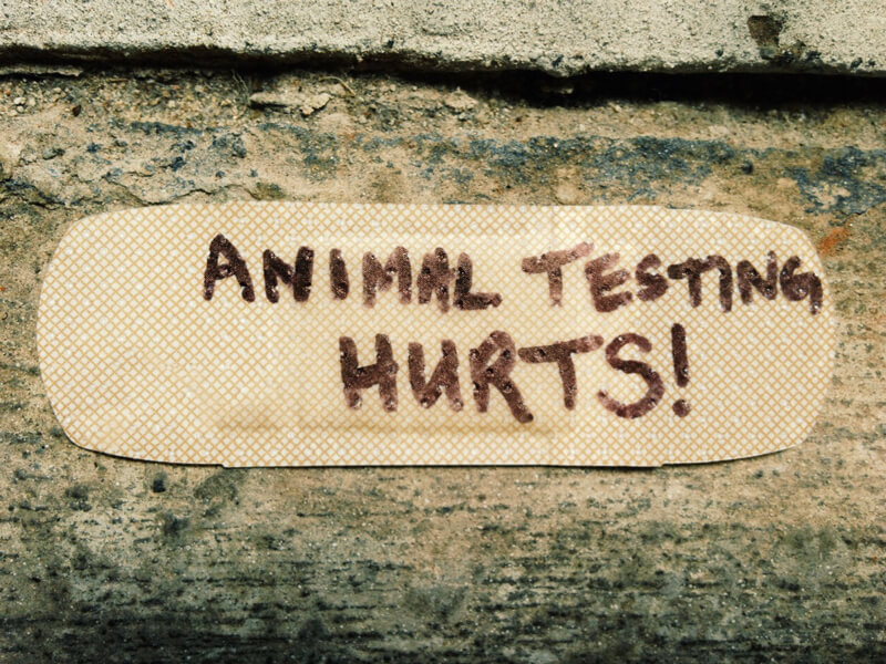 animal-testing-bandaid