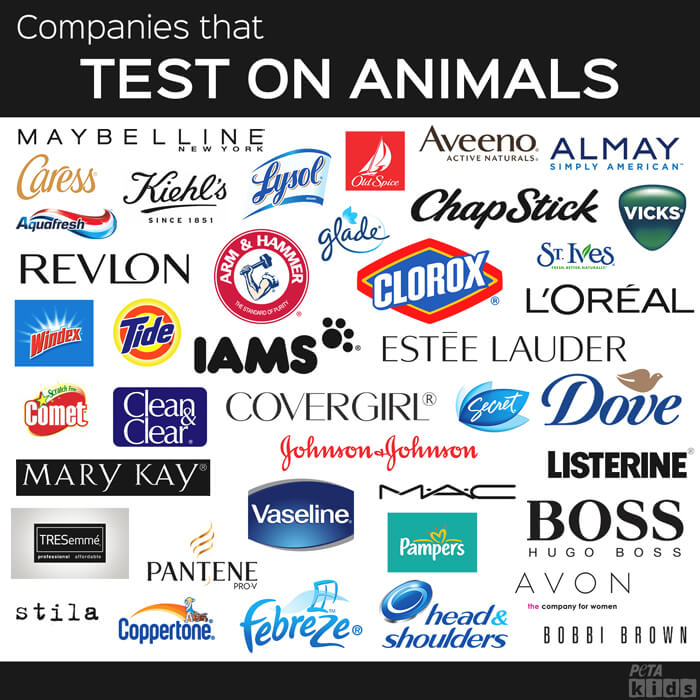 companies-that-do-test-on-animals-post