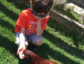 10 Questions Almost Every Vegan Kid Gets Asked
