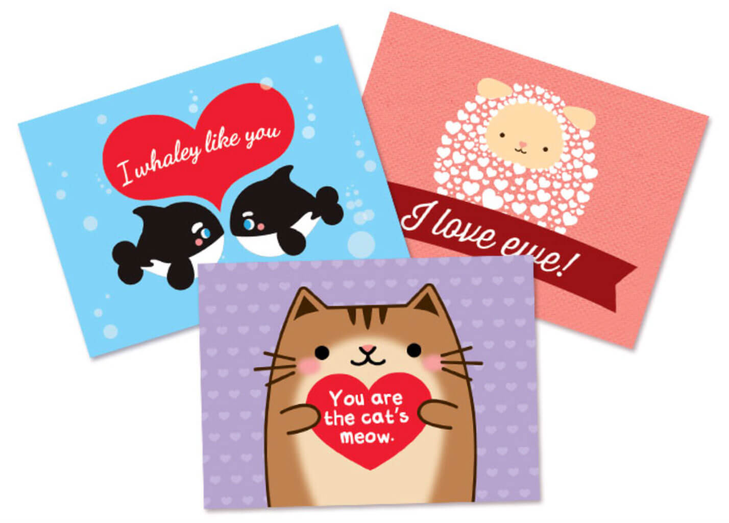 show your love for animals this valentine u0027s day spotlight