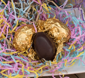 Easter Bunny–Approved Ideas for Helping Animals