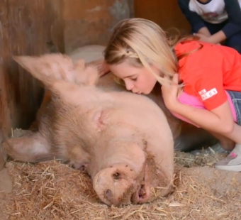 Mckenna Grace: A Gift to Animals