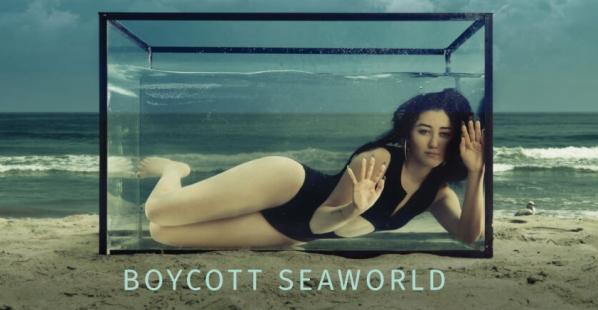 Noah Cyrus to SeaWorld: 'Send Orcas to Sanctuary'
