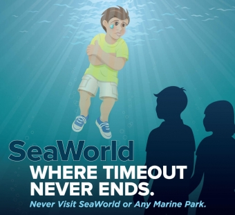 PETA Kids Ad Shows That SeaWorld Is a Lifetime of Punishment for Animals
