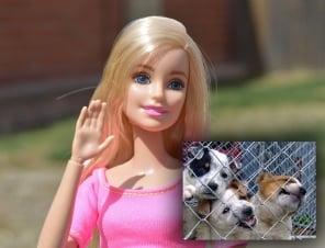 TELL MATTEL THAT BARBIE SHOULDN'T BE A DOG BREEDER!